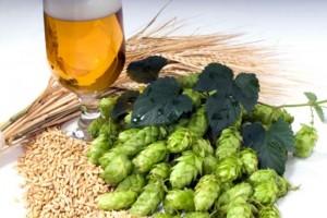 Из чего варят пиво