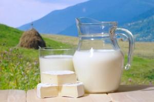 На ферме не кипятили молоко больных коров
