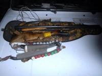 Незаконная охота на кабана