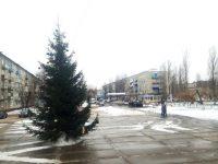 Ёлка на площади перед ЦДК