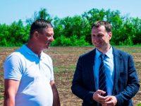 Ход полевых работ в агрофирме «Волга»