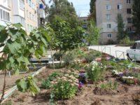 Дмитрий Романов контролирует создание «Комфортной городской среды»