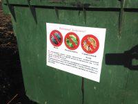Штраф от 2 до 100 тысяч рублей грозит за незаконный сброс мусора
