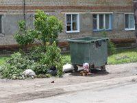 Этим летом для Маркса актуальна тема мусора